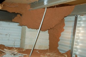 Outback Pest Control finding termite attack in subfloor