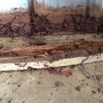 Damaged timbers in a shed